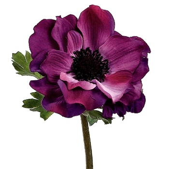 Anemone - Purple 15in - GTA012-EG
