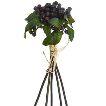 Berry - Bundle Aubergine 11in - XBS663-BU