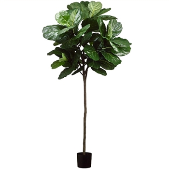Fiddle Topiary Ball Tree 84in Green