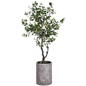 Ficus Tree Eva Stamped Fibre Cement Grey Planter 72in
