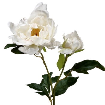 01. Peony Spray White 1 Bloom/1bud 20in - FSP661-WH