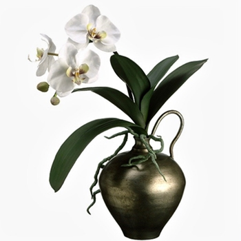 01. Phalaenopsis Potted Orchid White In Brass Jug 17H