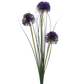 Allium - Pom X3 29in Purple