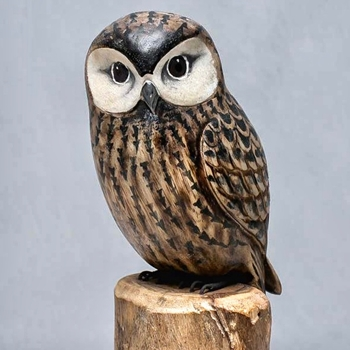Bird - Owl Saw Whet 11in