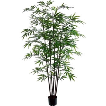 Bamboo Tree - Black 5ft - 7 Stalk