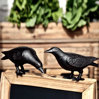Bird - Crow Set of 2 Cast Iron 10x5x6H