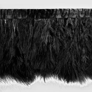Feather Fringe Black Tristan Ostrich 6-8IN