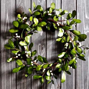 54. Wreath - Boxwood & Snowberry 18IN - XIW106-CR/GR
