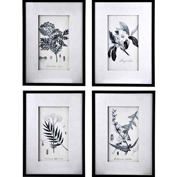 20W/28H Framed Print - Botanicals Grey & White