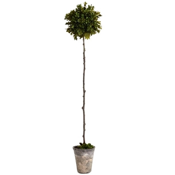 Boxwood Topiary - Faux 6x30H - Barklay Butera Collection