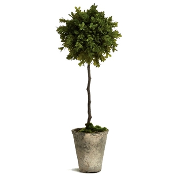 Boxwood Topiary - Faux 6x19H - Barklay Butera Collection