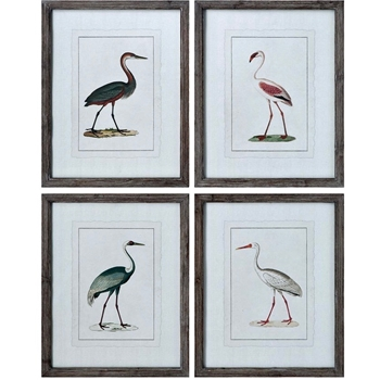 19W/24H Framed Print - Shore Birds