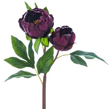 Peony - Aubergine 22in 2 Heads - FSP025-WI