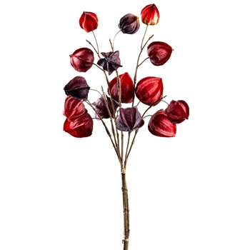 81. Ruby Red Chinese Lantern Bouquet 18IN