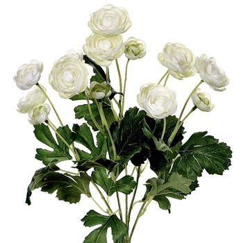 02. Ranunculus Bouquet 12 Bloom Cream 13in