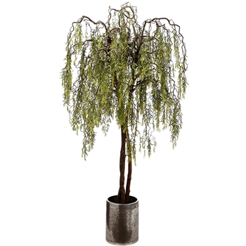 Willow Tree - Aluminium Patterned Planter 15W Pot 8FT Tree Height