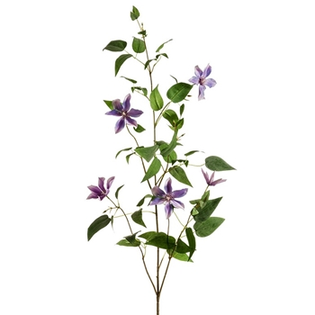 Clematis - Vine Spray Violet 58in - FSC244-PU