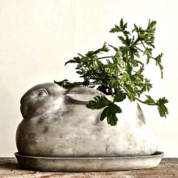 Planter - Rabbit With Plate Cement 10x6x5H