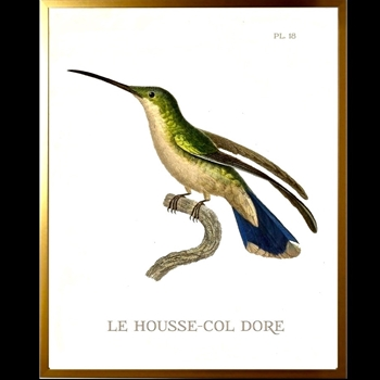 12W/16H Framed Glass Print Hummingbird #18 Left