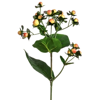 Berry - Hypericum Pick Salmon 22in - FSB038-PK