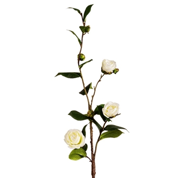 Camellia - White 31in - FSC031-CR