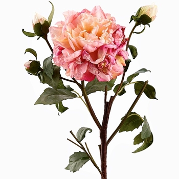 72. Peony Vintage Dried Ruffle 3Bud & Bloom Pink 23in - FSP572-PK