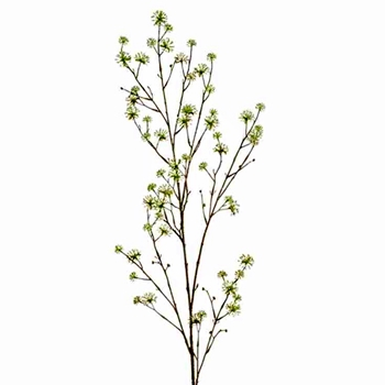 Blossom - Cornus Branch 55in Celery Green - FSC050-CR