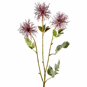 Clematis - Seed Spray Plum 31in - FSC730-PU/MF