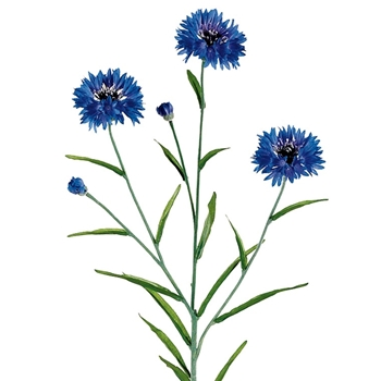 Cornflower - Cobalt Blue 25in
