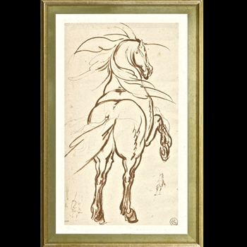 18W/28H Framed Print - Rearing Horse