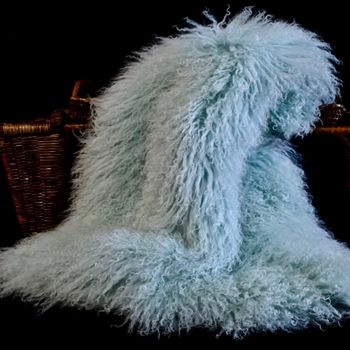 40. Ice Aqua Blue Tibet Mongolian Fur Throw 47W/23H