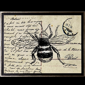 18W/14H Framed Glass Print Bee Postcard